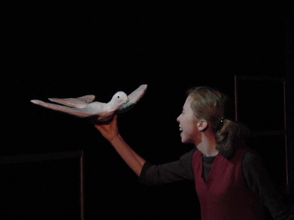Sailor of the skies: Yonah and the dove